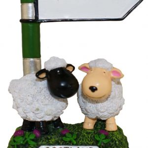 1644 sheep