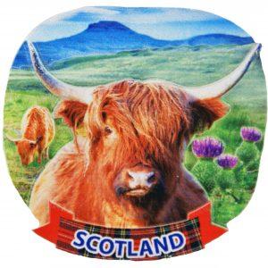 highland cow 3d